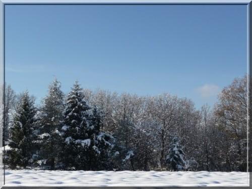Ballade dans la neige (8)