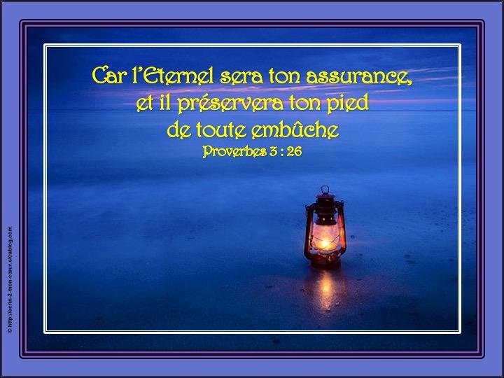 Car l'Eternel sera ton assurance - Proverbes 3 : 26