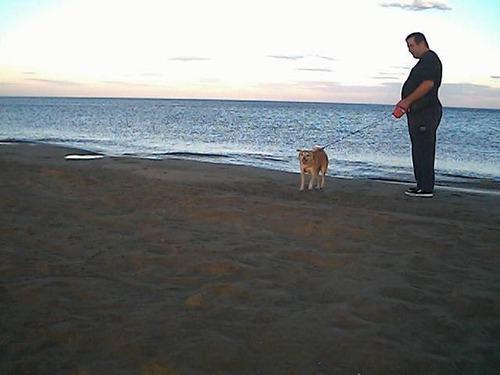 narbonne plage le soir avec mon chien