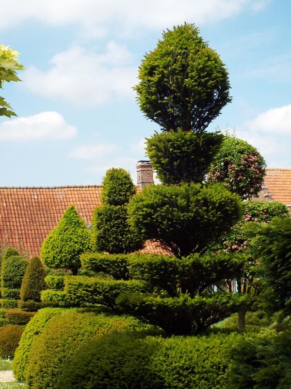 Jardin en Flandres ...