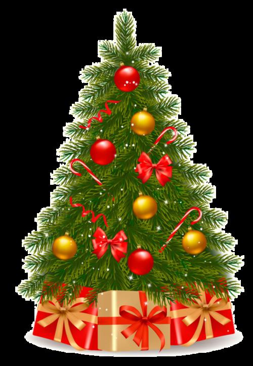 Tubes sapins  de Noël en png