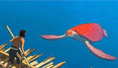 La tortue rouge, une nouvelle vague de poésie - L'Express