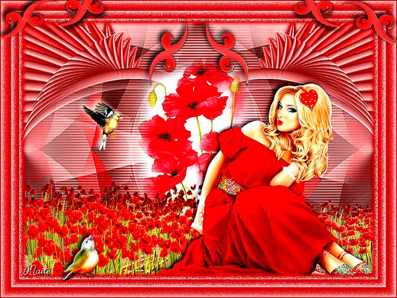 *Journée rouge..rouge Coquelicot...