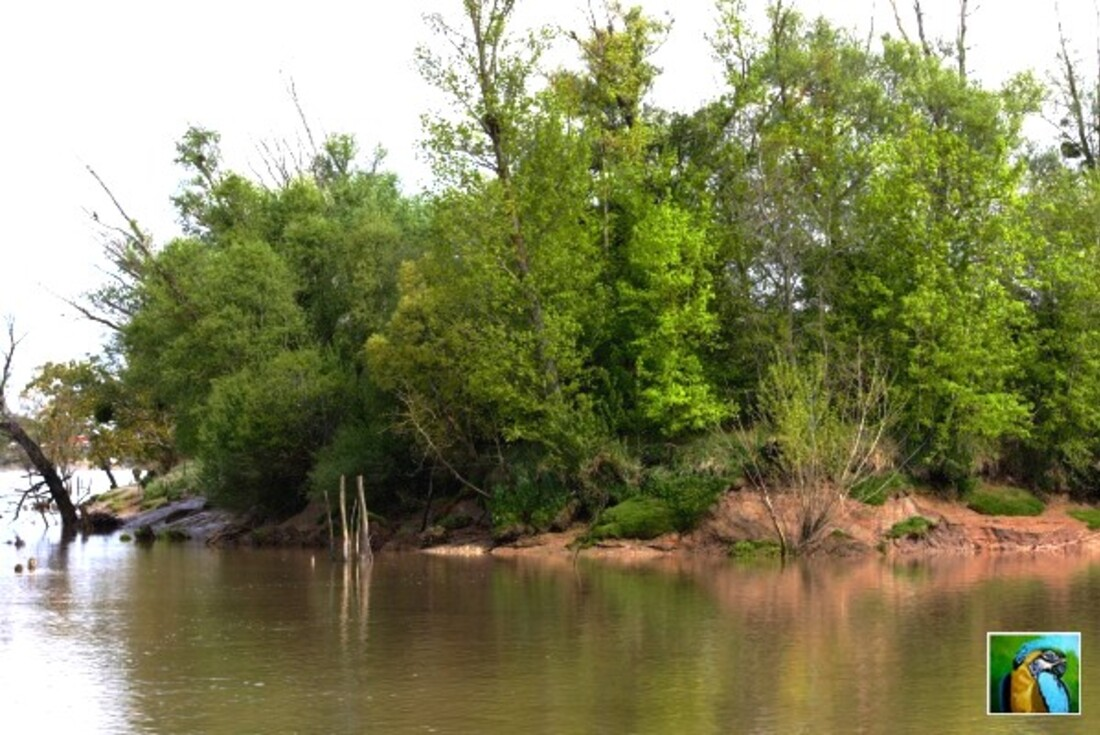 Balade sur la Garonne 2/5