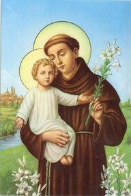 Saint Antoine de Padoue. Frère mineur, docteur de l'Église († 1231)