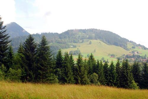 Vers le Mont Forchat