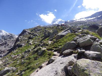 Topo Glacier d'Argentière