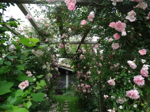 Des jardins à visiter ce week-end dans notre région