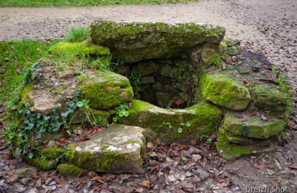 Saint-Lyphard :  Kerhinet : L'ancien puits est toujours présent, une grille métallique le sécurise