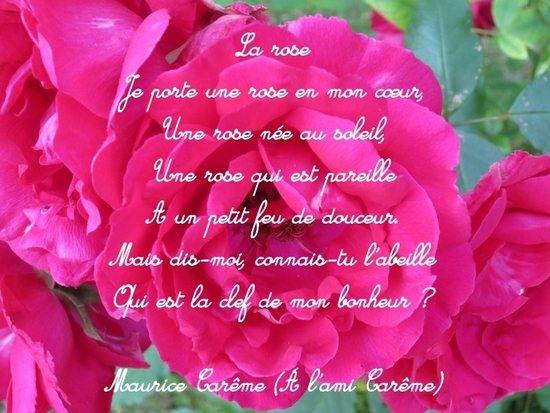Poemes De Maurice Carême La Rose Le Monde De La Philo Et