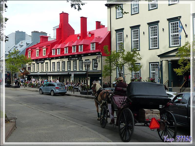 Trois moyens de visiter le Vieux Québec : la calèche, le bus à impériale, et le nôtre, avec les pieds... - Canada