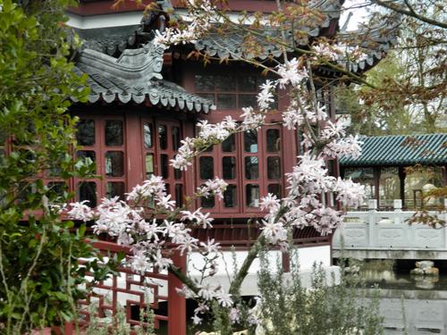 La flore du Pairi Daiza