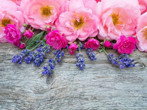 Roses et lavande,Bernadette R.