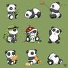 pandas-162194481