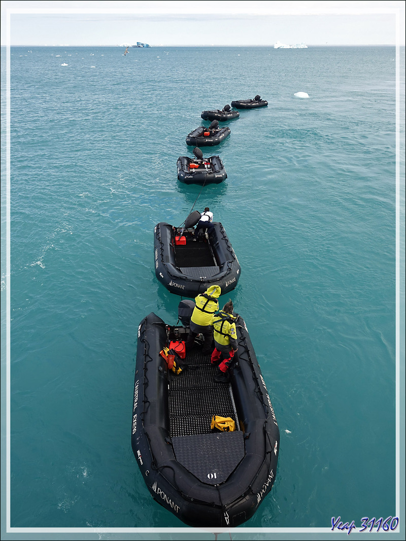 A la queue leu leu : les Zodiacs nous attendent pour nous amener à terre - Devon Island - Nunavut - Canada