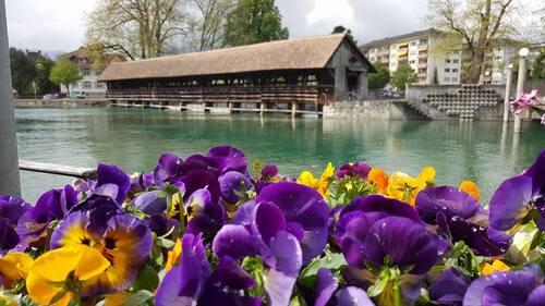 19 avril : ballade en Suisse - 1