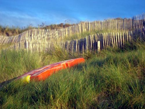 dune--t-.JPG