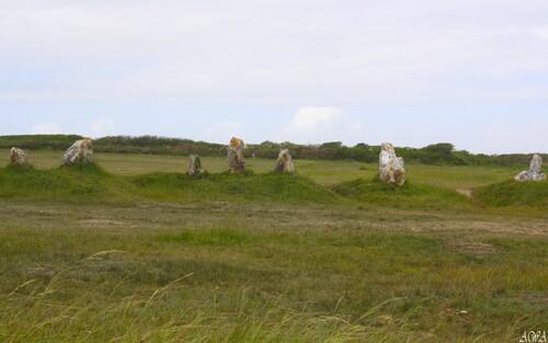 Bretagne en mai 2014 : CAMARET, pour la carte de France de Canelle