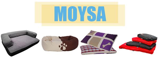 Moysa : Le confort pour nous, les chiens.