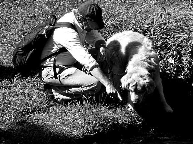 Metz Plage 2011 - L'été en Fête - Marc de Metz - 84