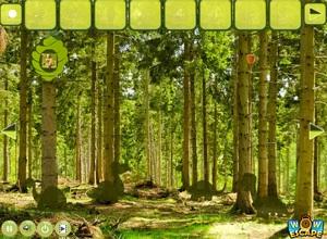 Jouer à Wow summer forest escape