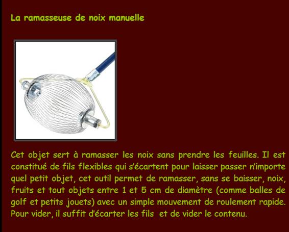 """""""  LES NOISETTES & LES  NOIX du JARDIN"""""""