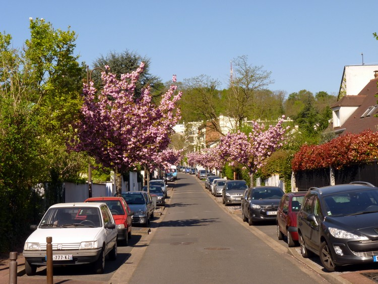 Rue des Gallardons
