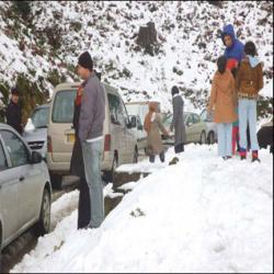 - تيهان العشرات من المتطوعين واصابة البعض بنوبات قلبية في جبال جيجل