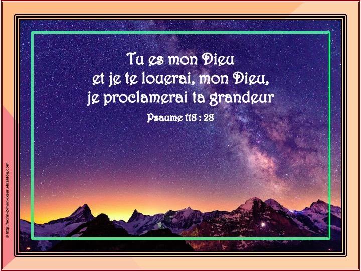 Tu es mon Dieu et je te louerai - Psaumes 118 : 28