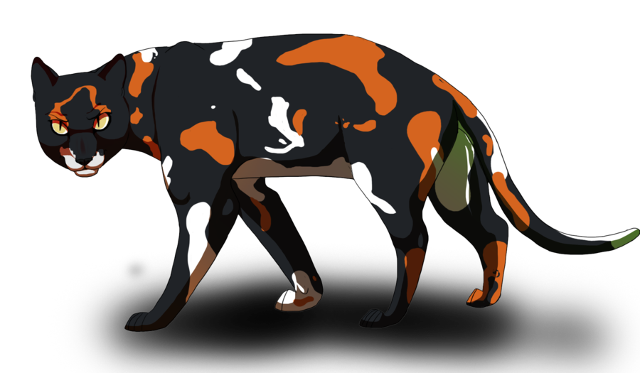 Okay people this is Sol from Warrior cats, guys think of Loki from the  avengers and warrior cats. You combine those two togeth…   Warrior cats,  Warrior cat, Warrior