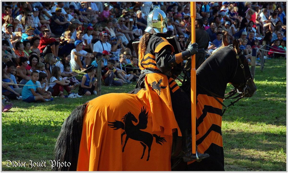 Commequiers (85) - Fête Médiévale 2014 (1)