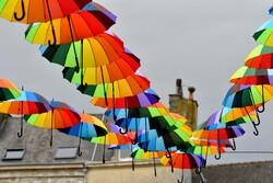 Les parapluies de Cleebourg 4.
