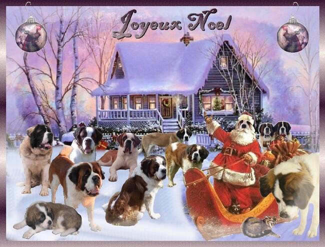 cartes de Noël en cadeau,servez vous