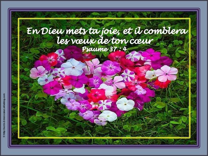 En Dieu mets ta joie, et il comblera les voeux de ton coeur - Psaumes 37 : 4