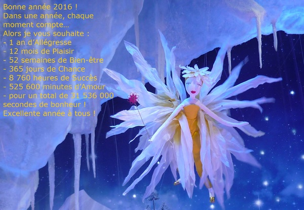 Le cartoscope du vendredi 1er janvier 2016