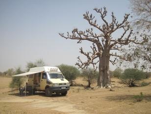 376 Mali Dernier repas sous un baobab