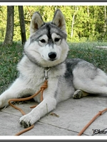 Jalya (7 mois)