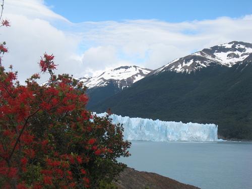 le Glacier EL PERITO MORENO.