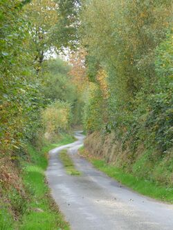 Le chemin de l'Aubertine