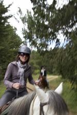 journée équitation
