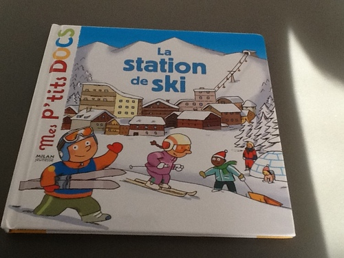 Un thème, des livres: le ski, la montagne, la neige...