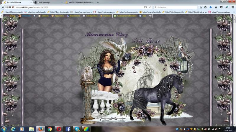 blog de Lilie rose