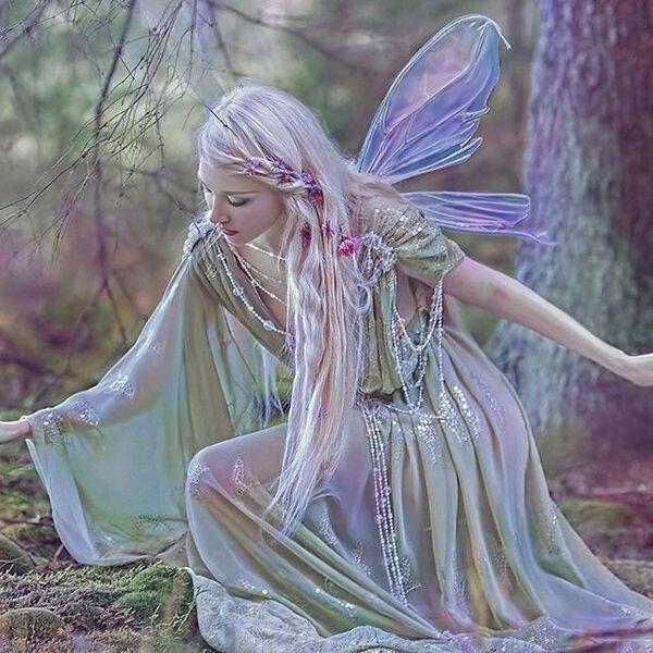 Fantasy type butterflies