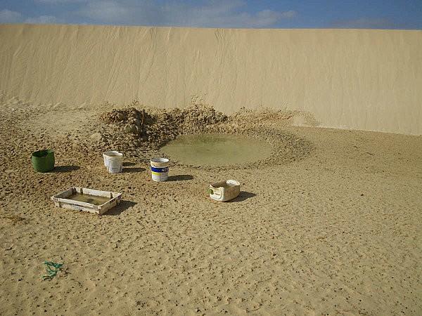 Boa Vista, l'île aux dunes24