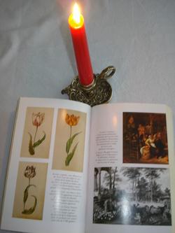 La tulipo mania