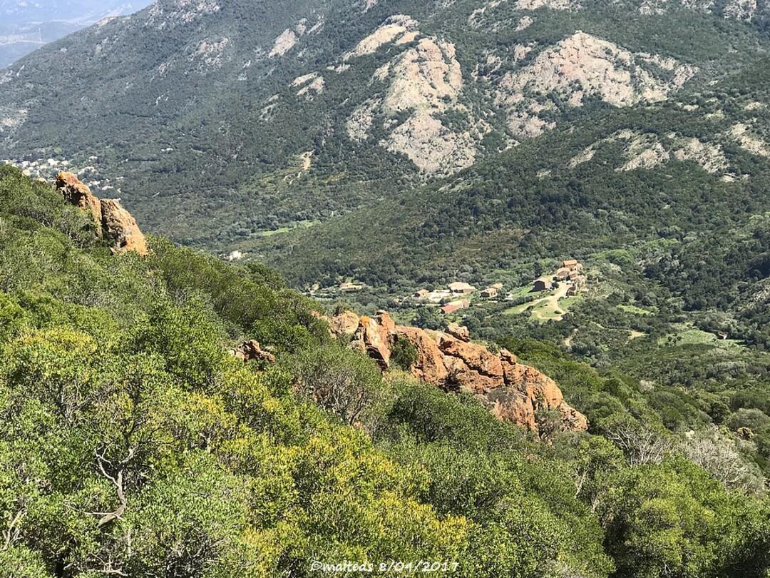 Sur le sentier de la Pointe Muvrareccia - Galéria - Corse
