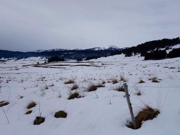 Vers le Sud, les pistes de Formiguères et des Angles