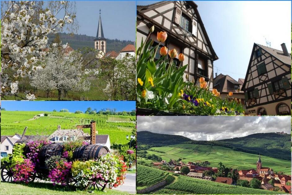 En Alsace au printemps