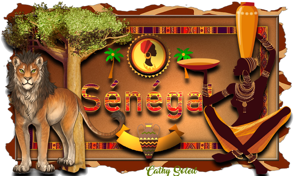 Voyage au SENEGAL
