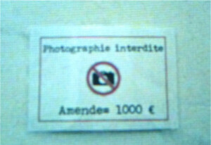 museum of everything photo interdite